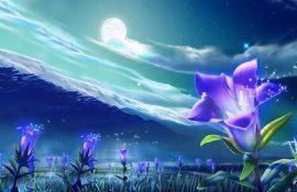 Цветочный гороскоп по дате рождения: узнайте, какой вы цветок