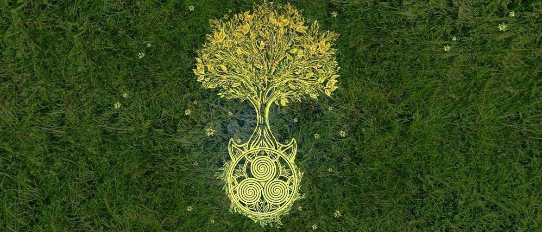 Гороскоп друїдів: яке ви дерево в кельтської астрології