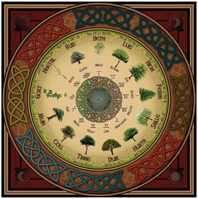 Гороскоп друїдів: яке ви дерево в кельтської астрології 1