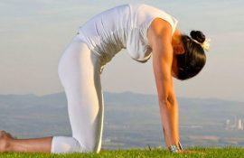 Полегшуємо біль у попереку: 5 кращих прийомів йоги