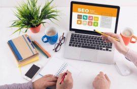 Бесплатные SEO курсы для новичков: учимся продвигать сайты самостоятельно