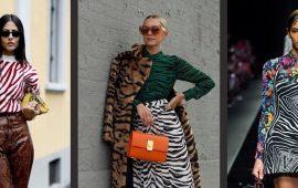 Зебра – як носити улюблений принт багатьох модниць?