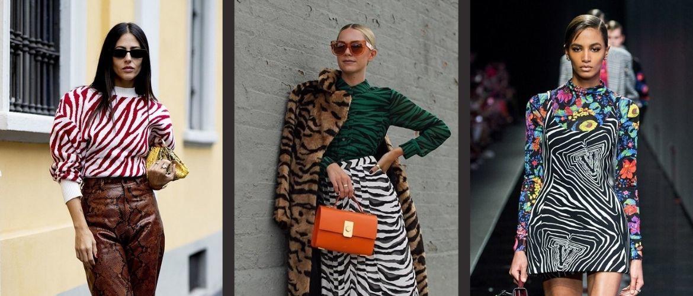 Зебра – как носить любимый принт многих модниц?