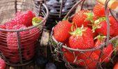 5 корисних продуктів, які небезпечні у великій кількості