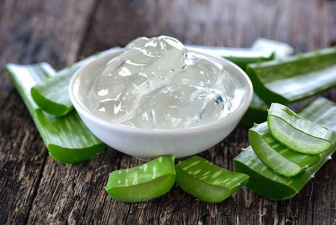 Летние ингредиенты красоты: натуральные средства, которые творят чудеса с кожей в жару 1
