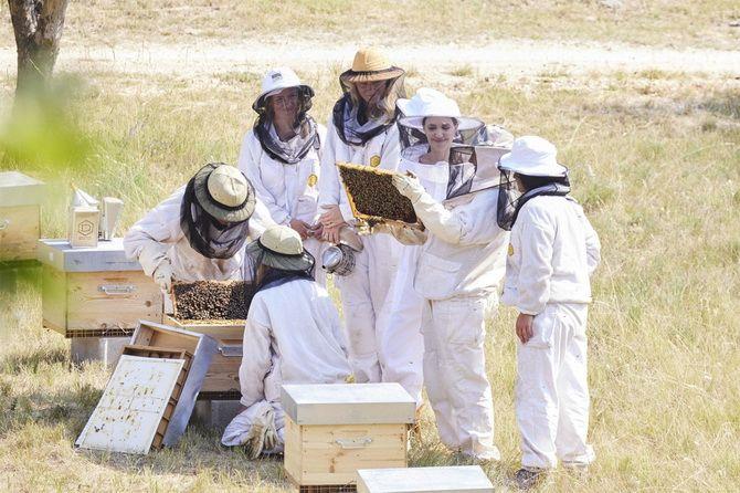 Анджелина Джоли в костюме пчеловода: актриса поздравила выпускников школы апиологии 4