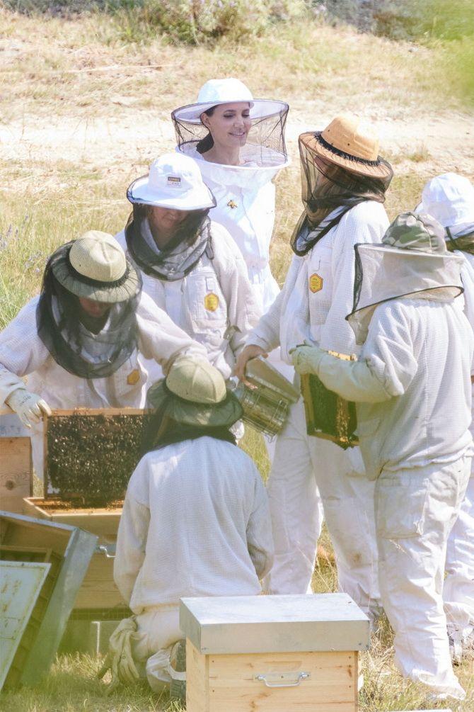 Анджелина Джоли в костюме пчеловода: актриса поздравила выпускников школы апиологии 6