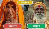 Найцікавіше про Індію, або ТОП-7 причин замовити квитки прямо сьогодні