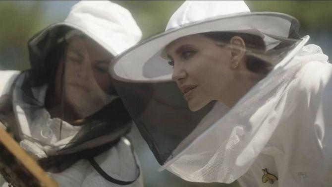 Анджелина Джоли в костюме пчеловода: актриса поздравила выпускников школы апиологии 3