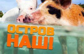 5 необычных островов, захваченных животными