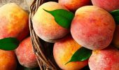 Первая помощь осенью: как персиковое масло помогает от насморка