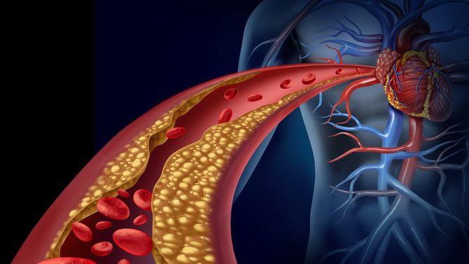 У чому користь цитрусових для організму? 4