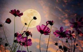 Повня у серпні 2021 – Місяць у Водолії двічі поспіль