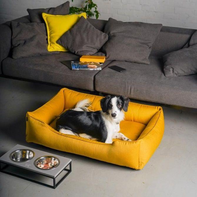 Harley and Cho: лучшие аксессуары и мебель для собак и кошек 1