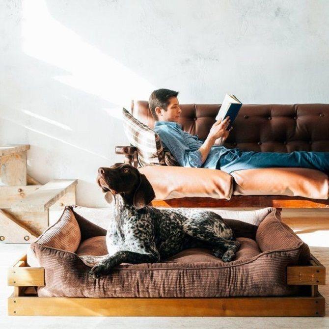 Harley and Cho: лучшие аксессуары и мебель для собак и кошек 2