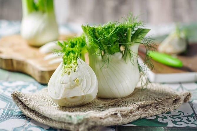 Фенхель – что это за овощ и зачем его едят осенью 5