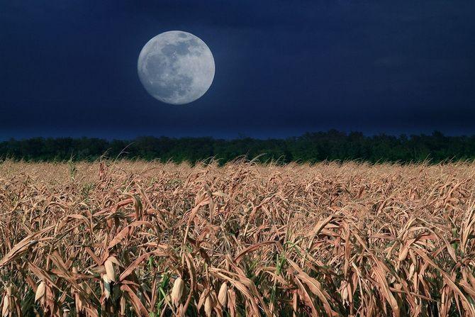 Повний місяць у вересні 2021 – що очікувати від Кукурудзяного Місяця 2