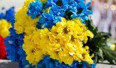 День защитника Украины – замечательные поздравления для воинов