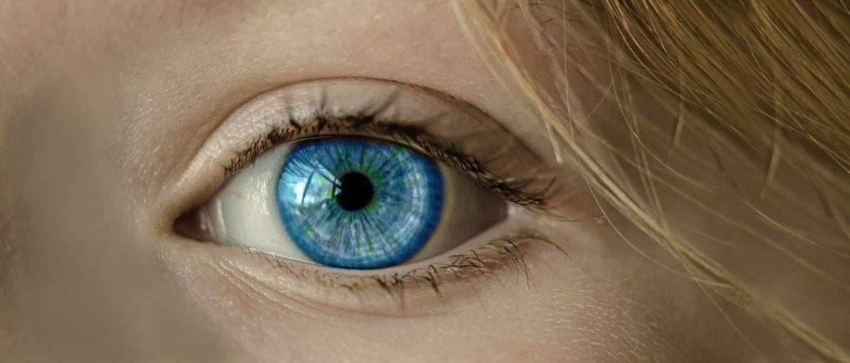 15 лучших продуктов для улучшения зрения